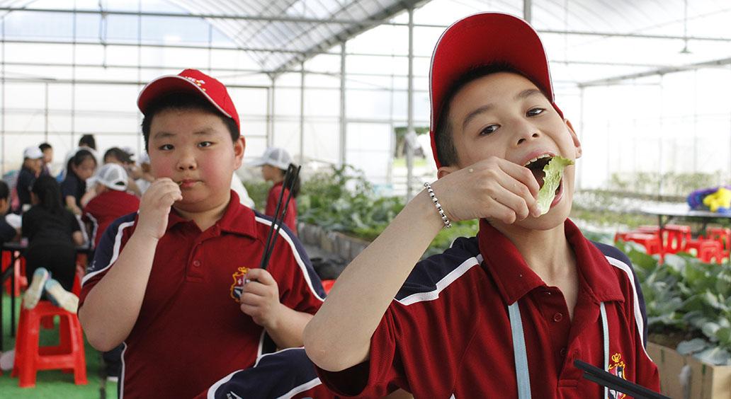 蔬菜大讲堂