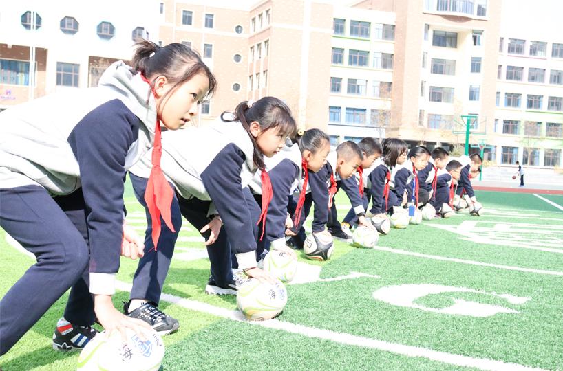 体育与健康学科群